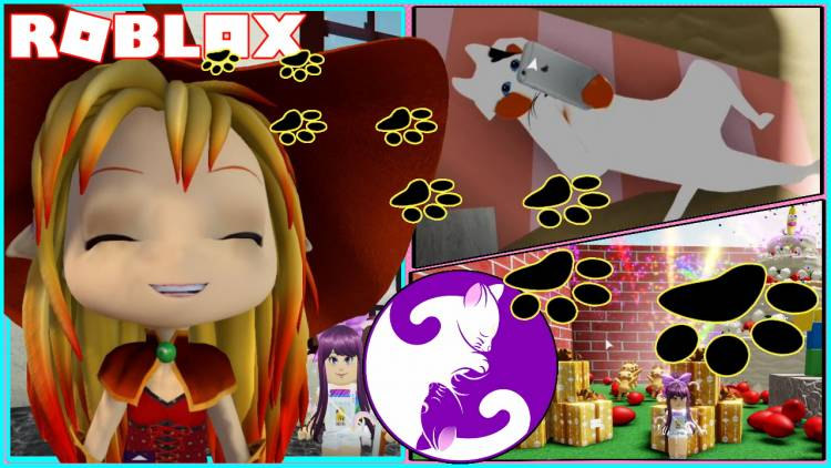Roblox Find the Cats Gamelog - November 08 2020