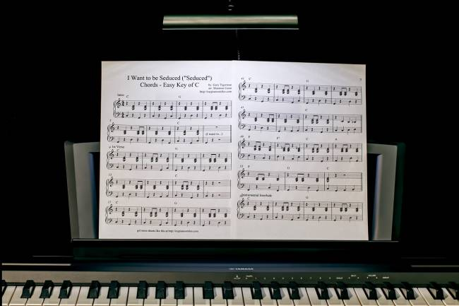 Piano Lessons: 8 Amazing Benefits of Learning